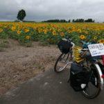 【自転車北海道旅】夏風邪サバイヴ2019_30日目(秩父別-留萌)